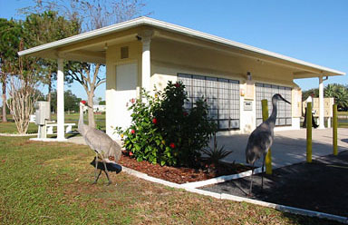 Foxwood Lake Estates Sand Hill Cranes Lakeland FL
